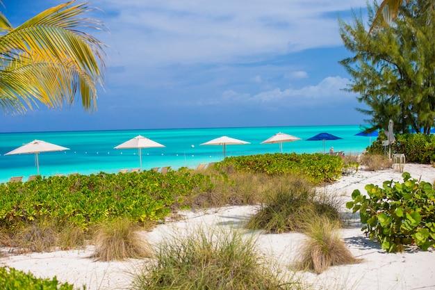 Beach chairs on exotic tropical white sandy beach