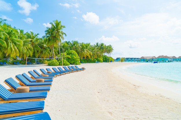 Beach chairs with tropical palm trees
