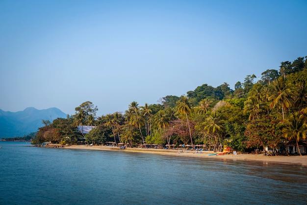 The beach on an exotic island.
