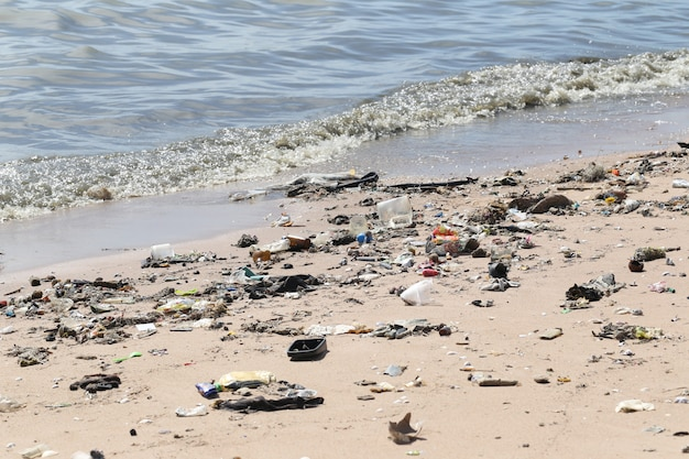 The beach have a garbage and effluents.