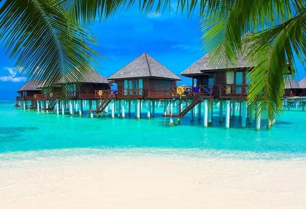 Пляж на мальдивах с несколькими пальмами и голубой лагуной