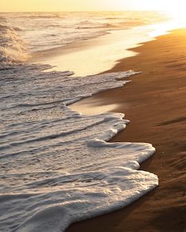 Spiaggia di sabbia vicino all'oceano tranquillo