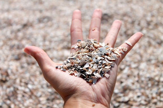 Beach sand and shells in female hand close-up