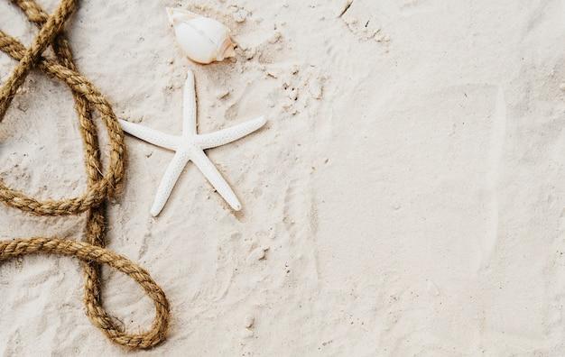 ビーチ夏休み休暇の旅の探検の概念