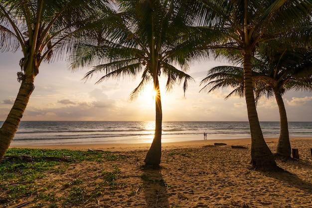 해변 여름 휴가 개념 배경 해변에 코코넛 야자수가 있는 자연 프레임과 태양 빛이 아름다운 일몰 또는 일출 풍경 배경을 플레어합니다.