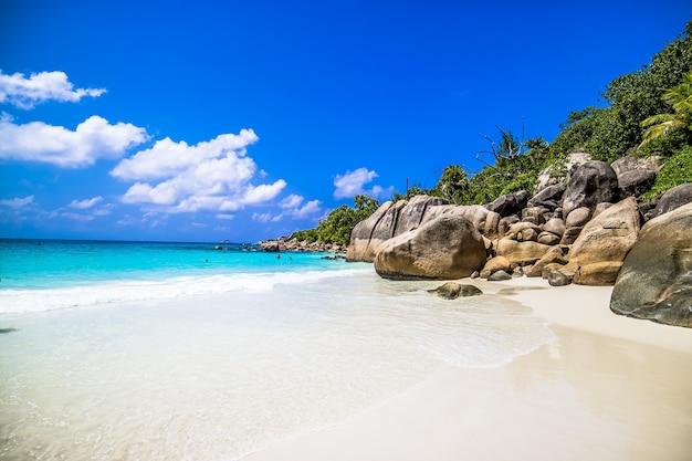 Spiaggia circondata dal mare e dal verde sotto la luce del sole e un cielo blu a praslin alle seychelles