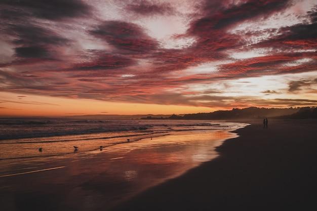 ニュージーランドのブライトンの日没時に曇り空の下で海に囲まれたビーチ