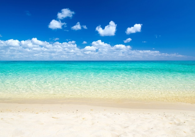Beach and tropical sea background