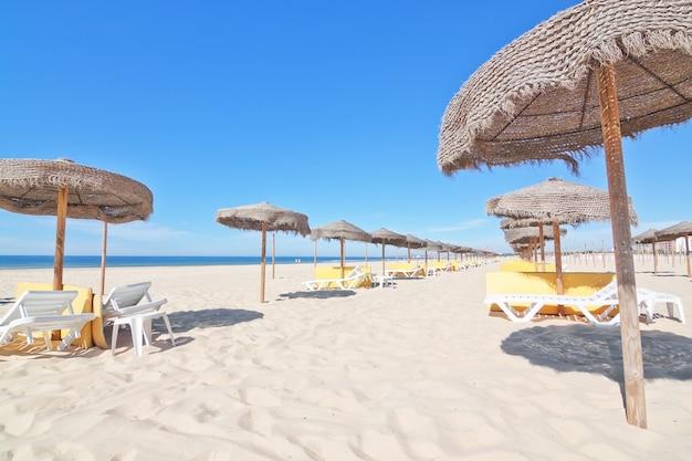 Пляжные зонтики на пляже у моря. что касается прочего.