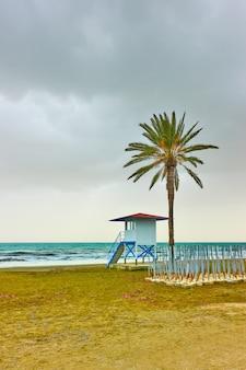Пляж с пальмой и вышкой спасателя в низкий сезон, ларнака, кипр
