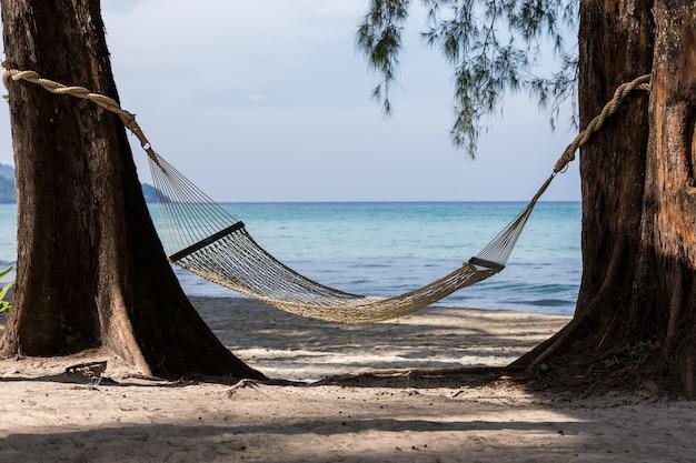 Пляжный гамак привязан к дереву с расслабляющим отдыхом.