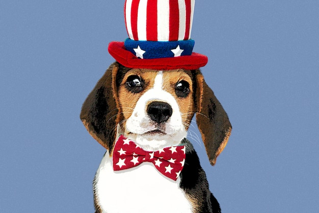 Beagle with hat in pop art style