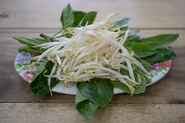 Bean sprouts as side dish of thai noodle.