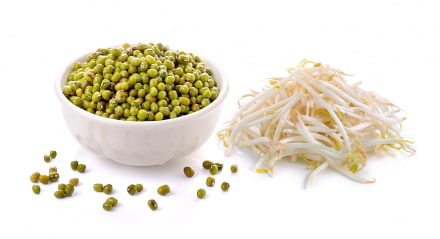 Bean sprouts and mung beans on white space