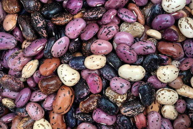 Beans background and textured. top view.background multicolored bean.