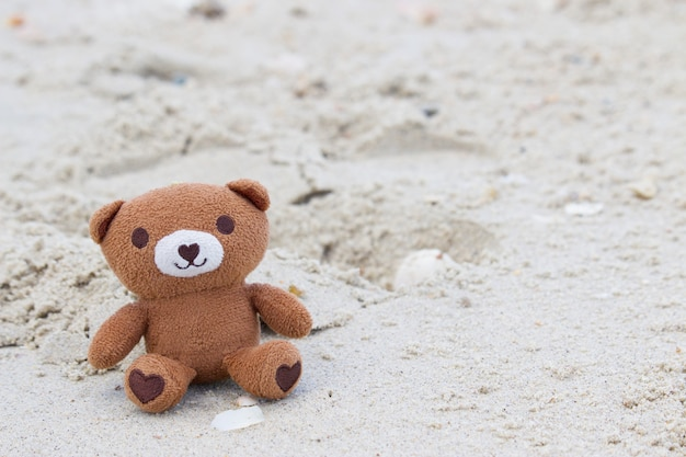 Bear is sitting at the beach.