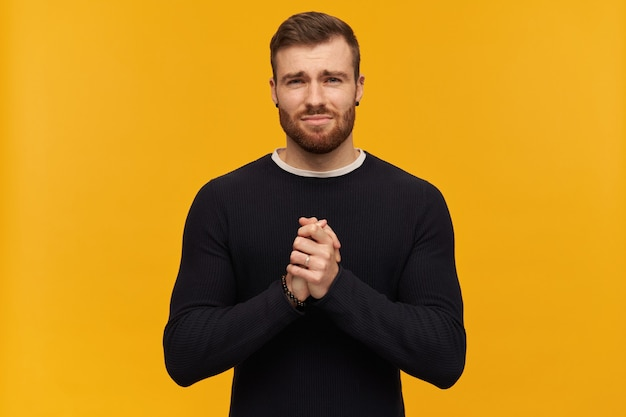 Bearded begging man with brunette hair. looks regretful. has piercing. wearing black sweater. holds palms together. plead for something.  isolated over yellow wall