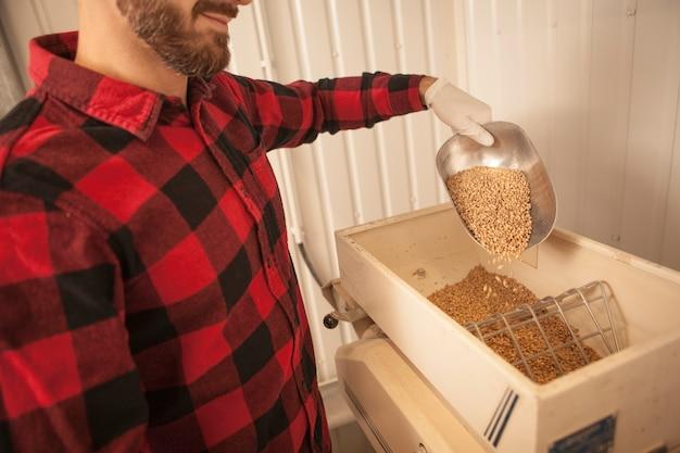 Бородатый пивовар засыпает семена ячменя в мельницу