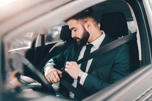 Bearded businessman in formal wear fastening seat belt in his car.