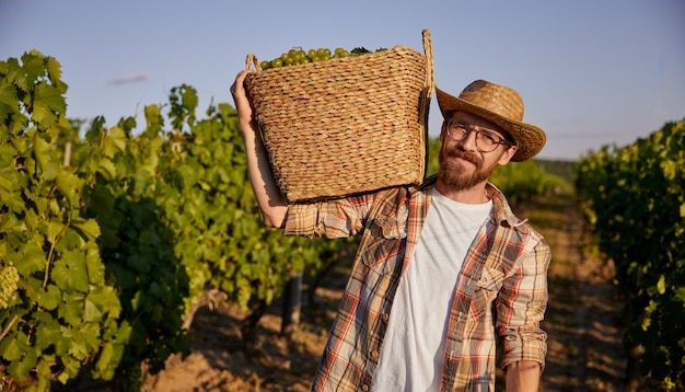 Bearded farmer with basket on vineyard