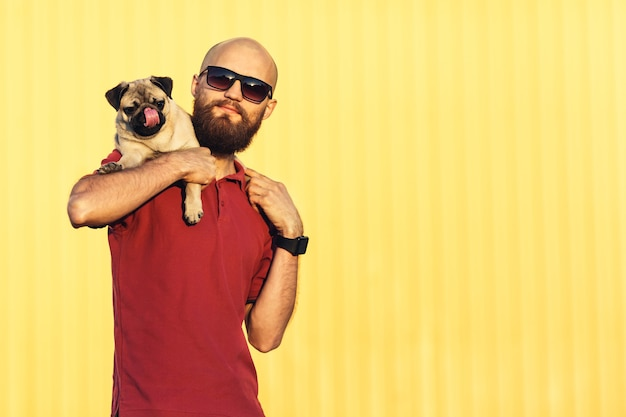 Bearded guy in sunglasses is holding pug puppy on his shoulders against background of yellow wall. dog licks his nose. concept life style. copy space.