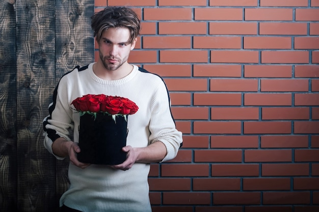 Bearded macho man, brutal caucasian hipster with moustache in sweater holds red rose flowers in box as valentines day present on wooden and brick wall background, copy space