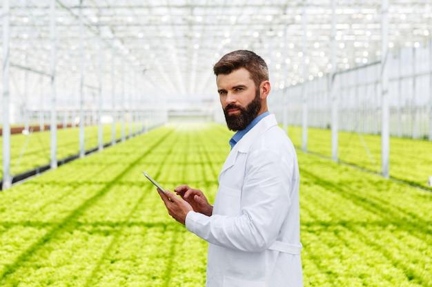 Бородатый мужской исследователь изучает растения с таблеткой, стоящей в теплице