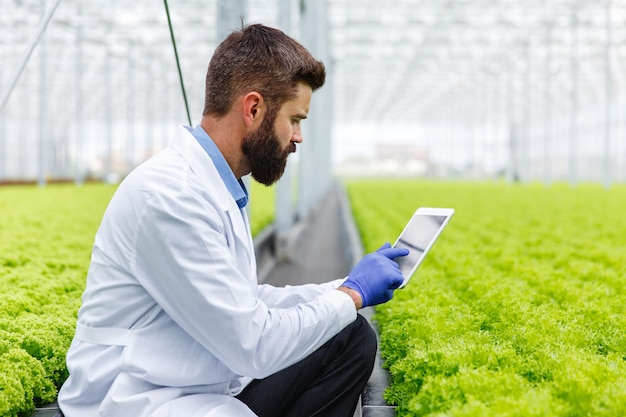 Bearded male researcher studies plants with a tablet standing in the greenhouse