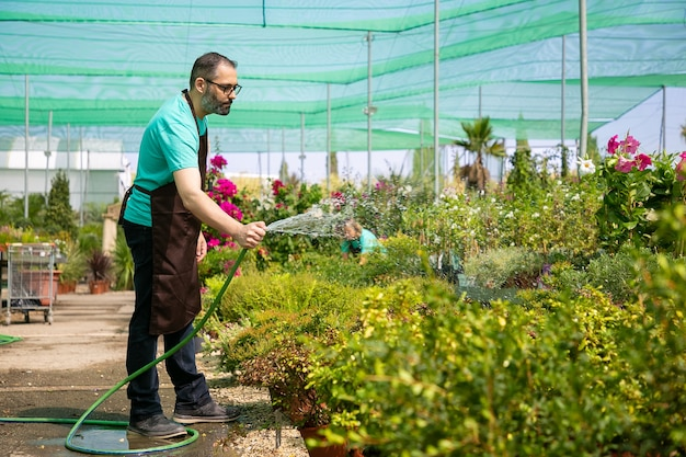 Bearded man holding hose, standing and watering plants. unrecognizable blurred colleague growing flowers. two gardeners wearing uniform and working in hothouse. gardening activity and summer concept