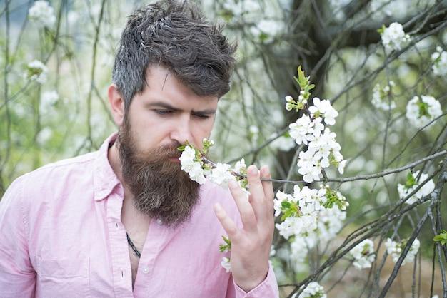 咲く桜の木の近くのひげを生やした男。流行に敏感な人は桜を嗅ぎます。春のムードコンセプト。