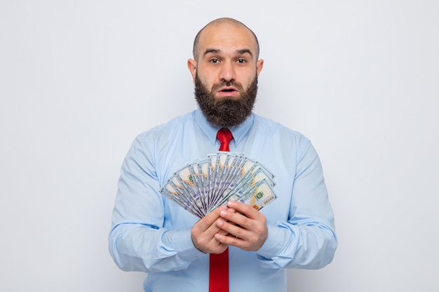 Bearded man in red tie and blue shirt holding cash looking at camera amazed and surprised standing over white background