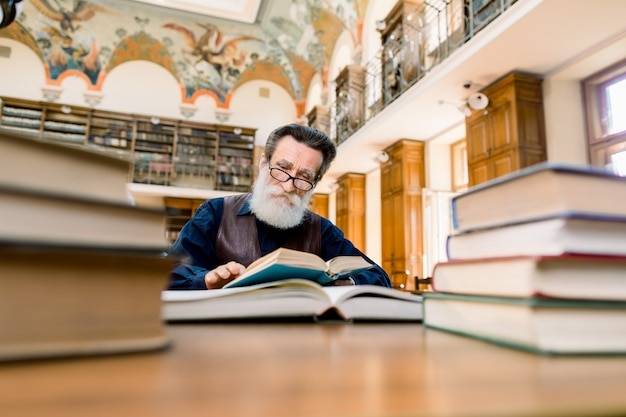 Bearded senior man, writer, scientist, teacher, book lover, sitting in old vintage city library at the table with many books on, and reading a book