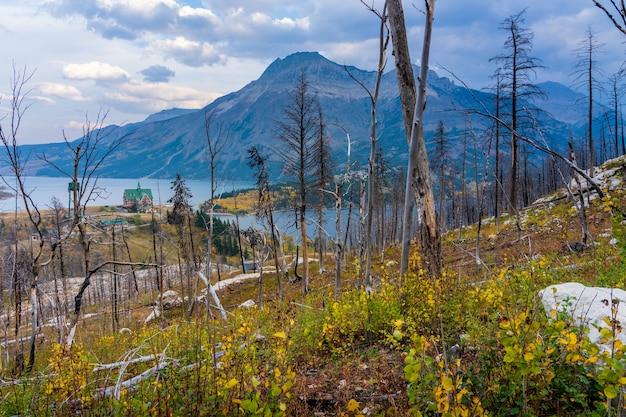 Походная тропа bears hump после лесного пожара kenow wildfire осенью 2020 года. национальный парк уотертон-лейкс, альберта, канада.