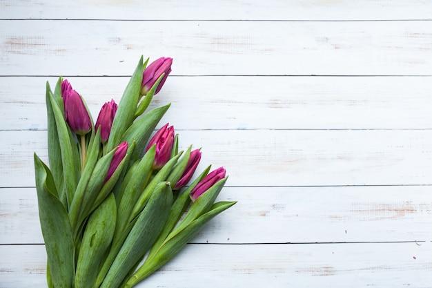 美しい花の背景に白い日