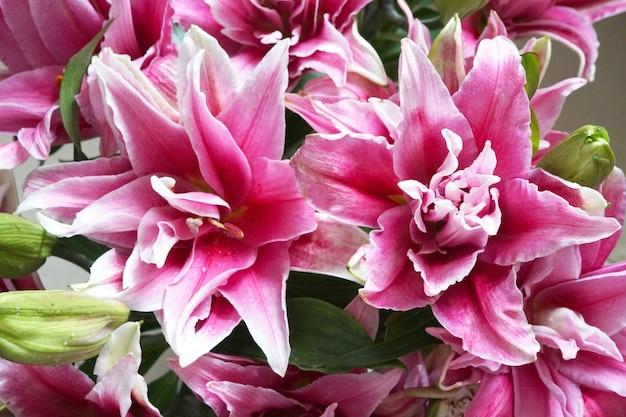 ピンクのリリウムまたはユリの花の美しい花束