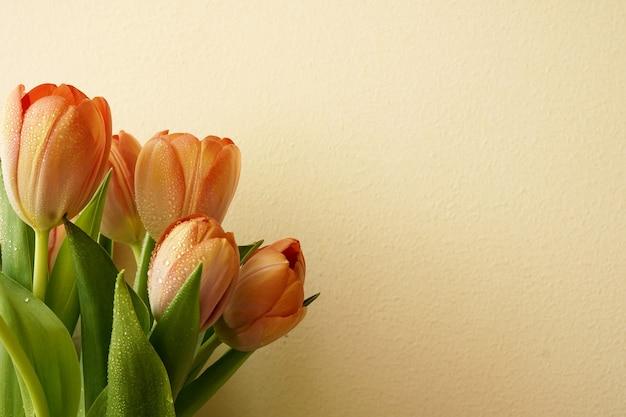 白い背景の上の美しいチューリップの花束