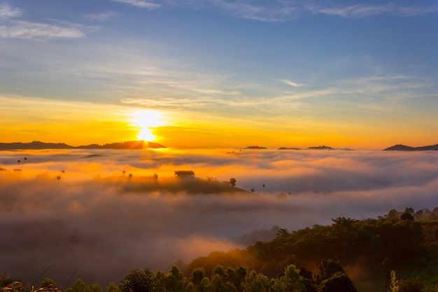 Beautiful accommodation in the middle of the mist at khao kho, phetchabun province, thailand.