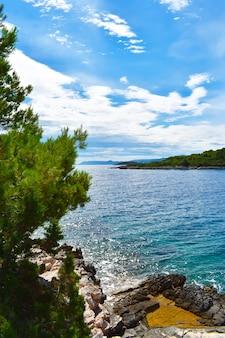 크로아티아의 아름다운 아드리아 해. 녹색 소나무, 바위, 청록색 물, 세로 사진, 좋은