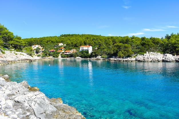 Красивое адриатическое море в хорватии хвар, красивый спокойный залив, зеленые сосны. голубая, прозрачная, бирюзовая вода, солнечная погода. басина бухта, мудри долац