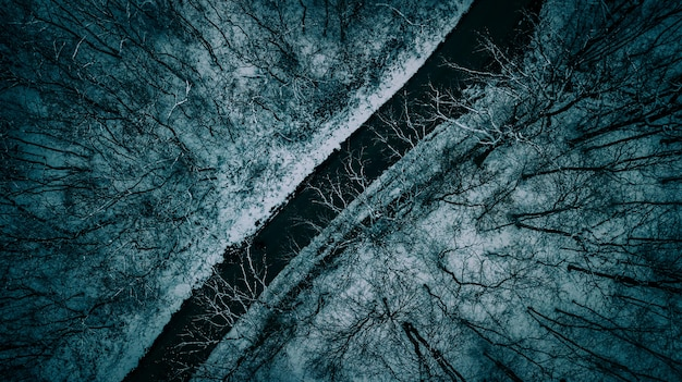 Beautiful aerial overhead shot of a narrow road between trees during winter