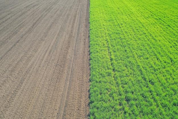 Bella ripresa aerea di un campo agricolo verde