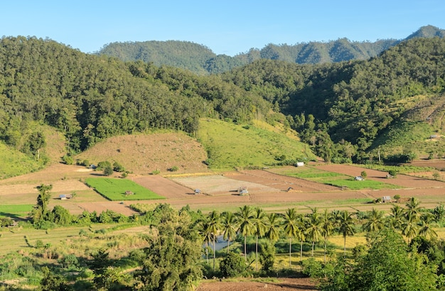 Beautiful aerial view of countryside farming in the mountain valley in mae hong son,  thailand