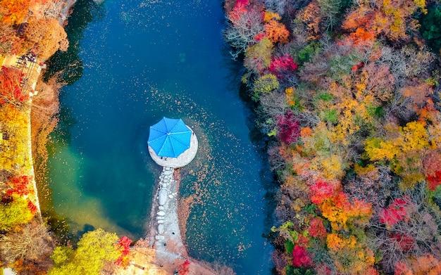 가을 시즌 내장산 국립 공원, 한국의 아름다운 공중보기.