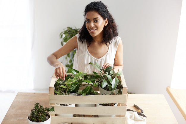 Beautiful african woman smiling taking care of plants in box at workplace. copy space.