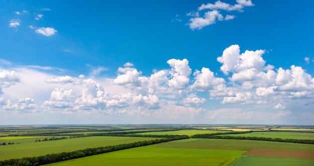 아름 다운 농업 분야 녹색 및 노란색 필드 초원 아름 다운 구름과 농촌 풍경
