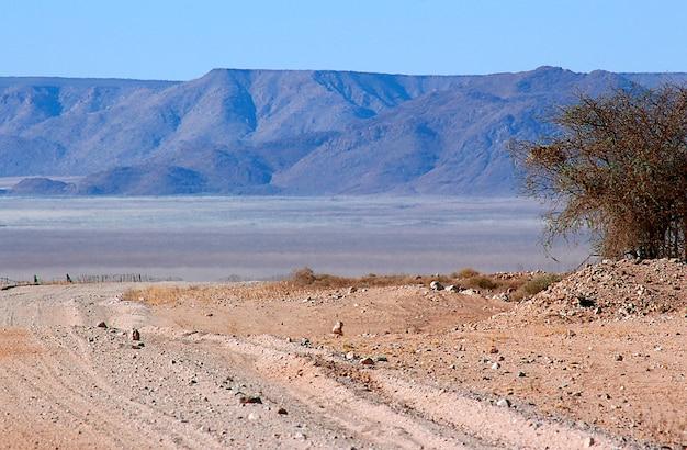 Красивые и красочные горы и гравийная дорога намибии