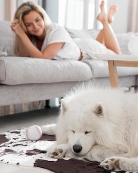 Красивая и милая собака и женщина