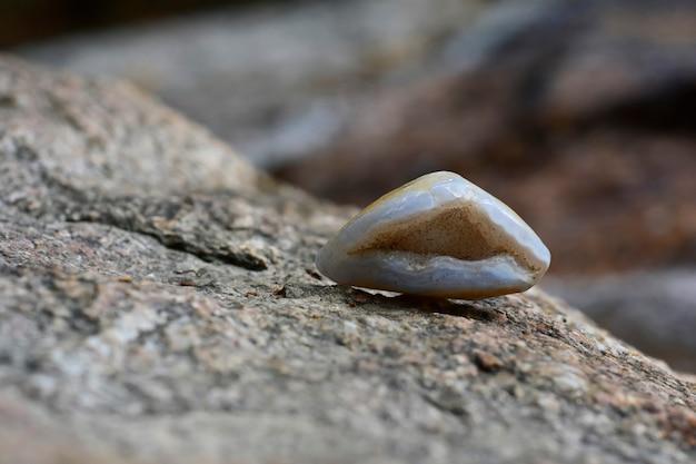 Красивый и редкий лабрадорит лежит на земле