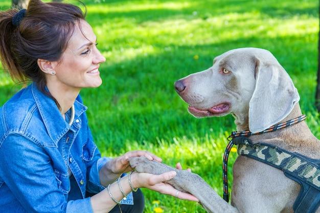아름답고 웃는 그녀의 아름다운 개 weimaraner와 함께 공원에서 휴식