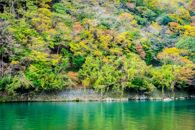 Beautiful arashiyama river with maple leaf tree and boat around lake